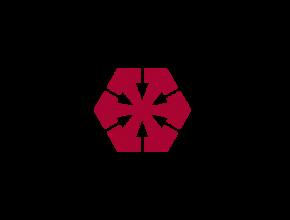 logo_laiki_72_t